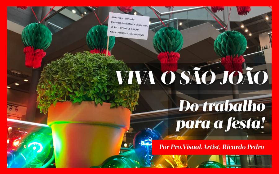 Viva o S. João: Do trabalho para a festa! image